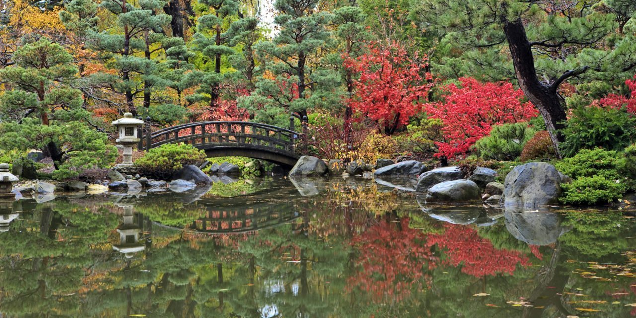 Moon Bridge at Anderson Japanese Gardens