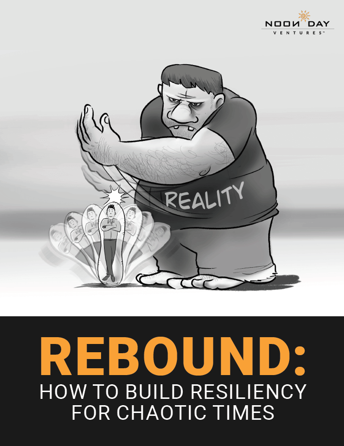 rebound, how o build resiliency for chaotic times